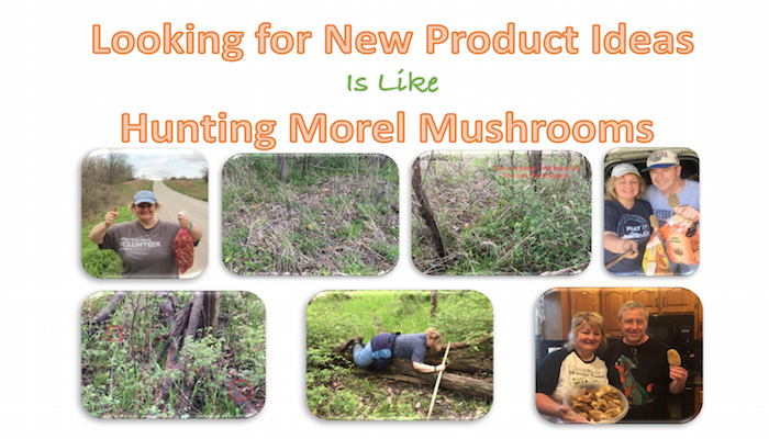 Hunting Morel Mushrooms